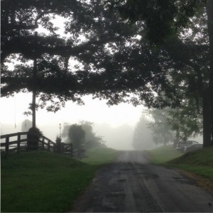 Nimrod Hall Writers' Workshop misty lane