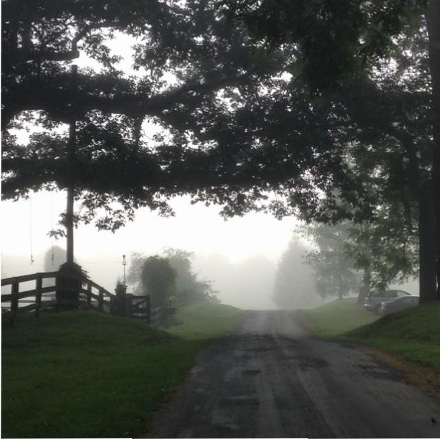 Nimrod Hall Writers' Workshop misty lane