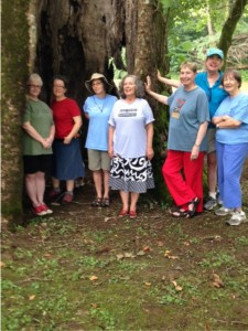 Nimrod Hall Summer Arts Program writers standing inside giant hollow sycamore tree