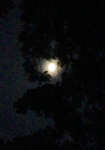 Full moon over Nimrod Hall Summer Arts Program and Writers' Workshop