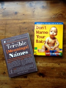 book covers of The Terrible Meaning of Names by Justin Cord Hayes and Don't Name Your Baby by David Narter