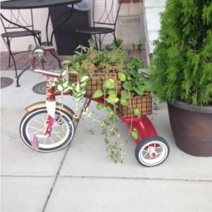 Ashland-bicycle-planter