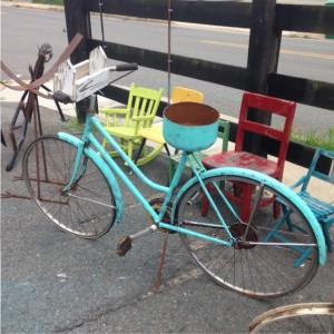 Ashland-bike-bird-box