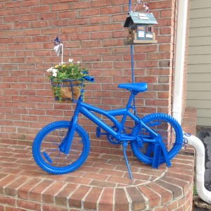Ashland-bike-blue