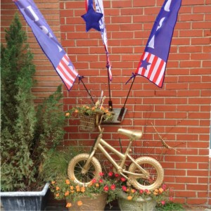 Ashland-bike-flags