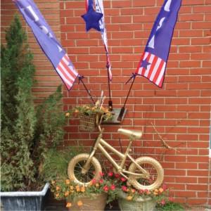 Ashland-bike-flags