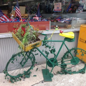 Ashland-bike-green-and-yellow
