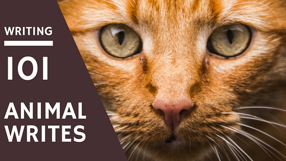 Writing 101 Animal Writes