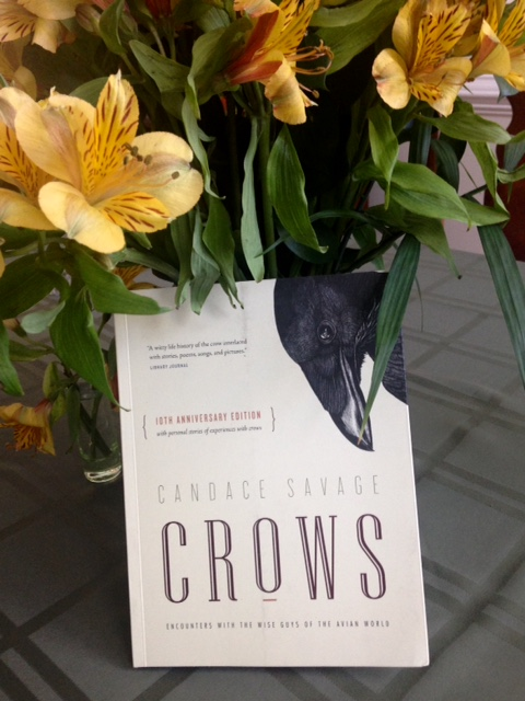 """Crows"" by Candace Savage"