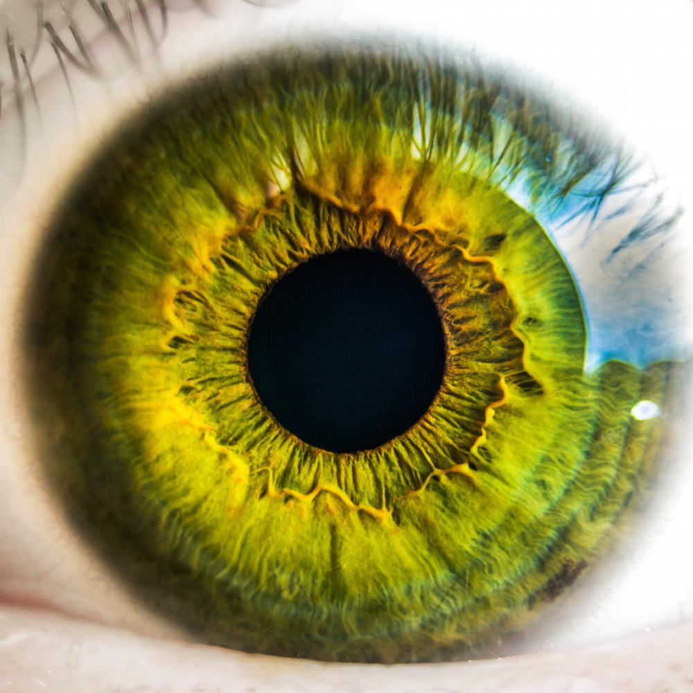 eye, green eye, point of view, motivation for writers, authors