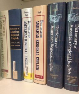 dictionaries-on-shelf