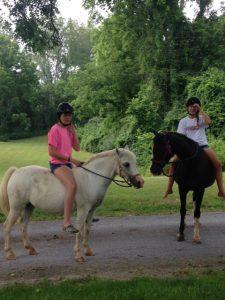 Amber and Frankie horses Vinyard Farms