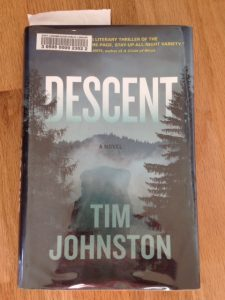 Tim Johnston Descent