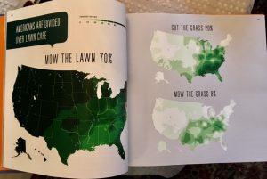 lawn speaking american
