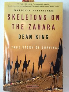 besotted books skeletons zahara dean king
