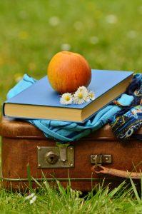 book addict suitcase